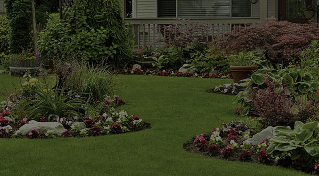 Norwalk Landscape Design